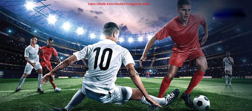Fakta Dibalik Keberhasilan Penggemar Bola